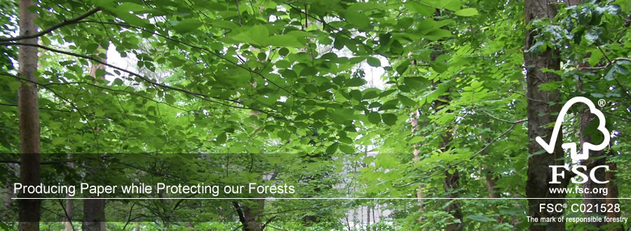 Producing Paper while Protecting our Forests